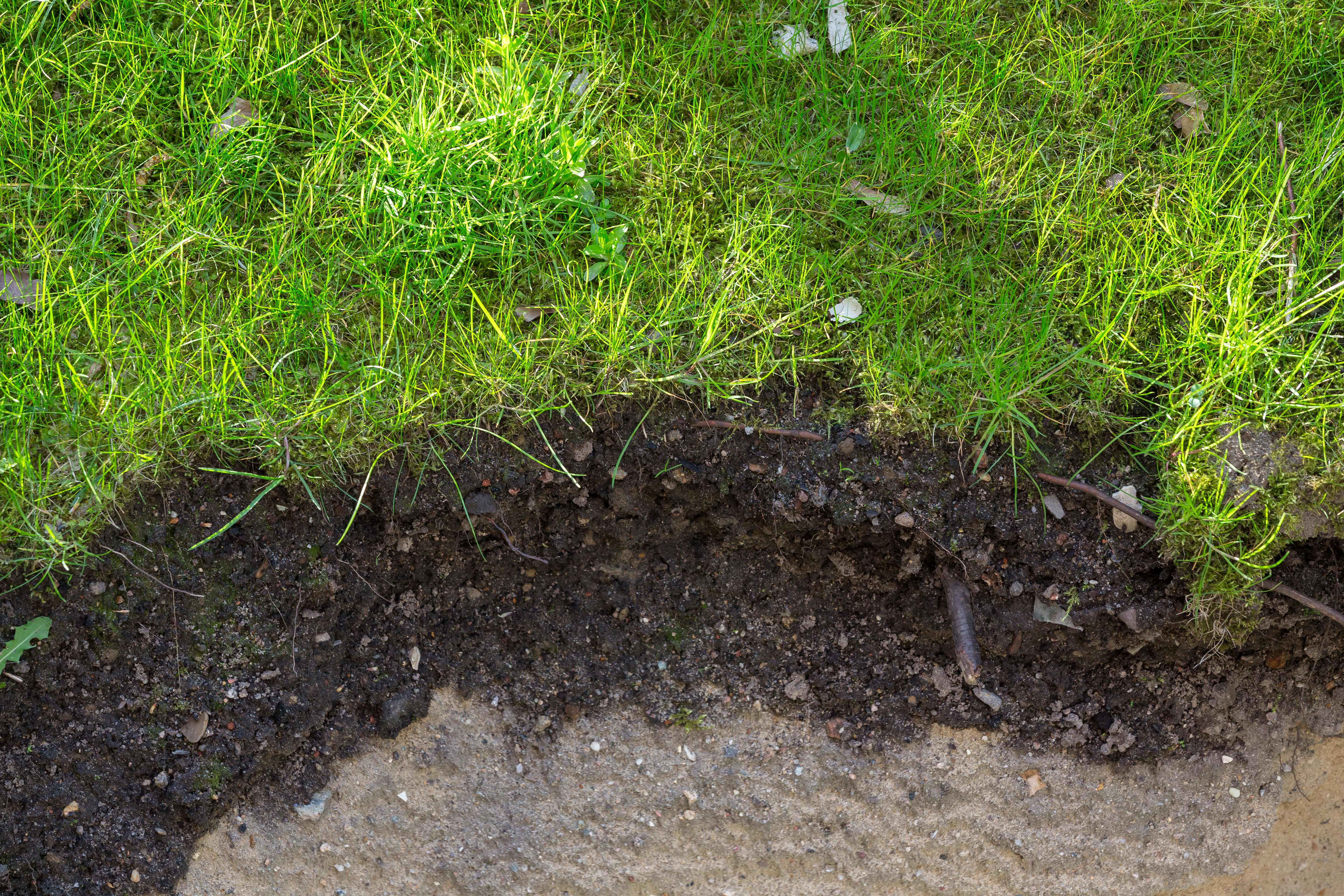 How much carbon can be stored by increasing your soil microbes?