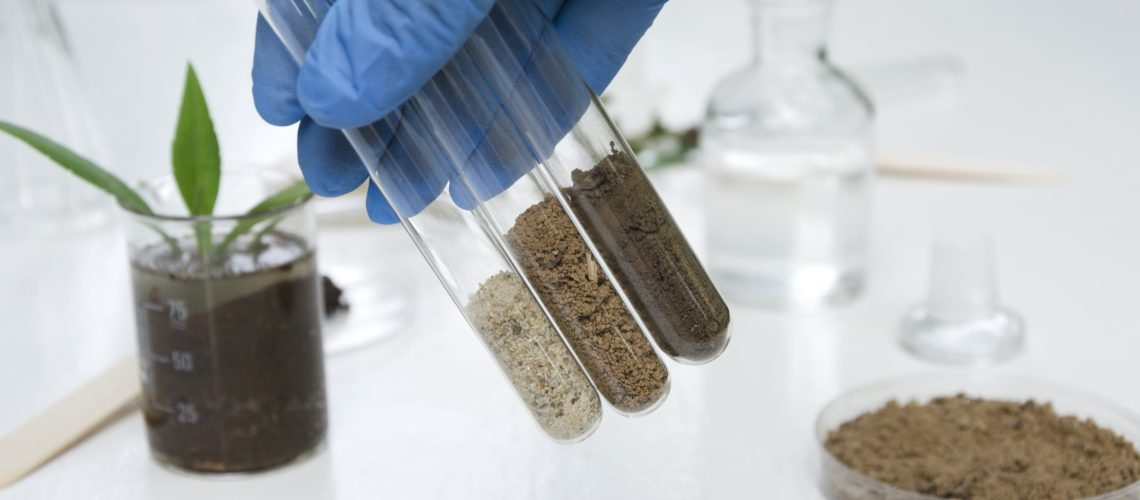 Laboratory assistant working with plants, different kinds of soil and sand, testing and analyzing results