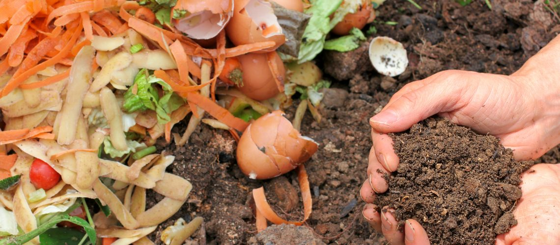 Hands are holding composted earth.